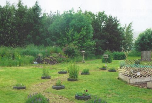 Ryton garden